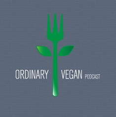 Favourite Vegan Blogs of 2019 ordinaryvegan.net